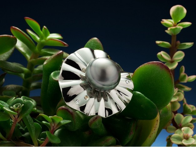 """Isabelle Souppe for In Fine, ring """"Au Fil de l'Eau"""" Baroque Tahitian pearl button 925iamants money on diamonds on yellow gold"""
