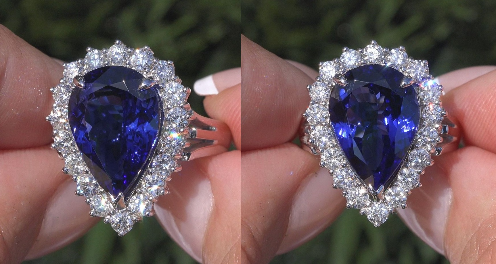 gia with tanzanite weight find the medium sale post few good royal status grade carat oh by inclusions was for natural blue party dimensions posts